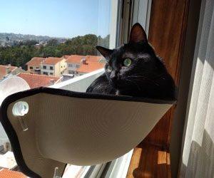 Cama de janela PerfectView photo review
