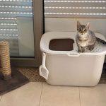 Caixa de areia com entrada superior photo review