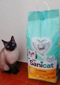 Sanicat Fragrance Free (sem odor) - Areia ultra aglomerante photo review