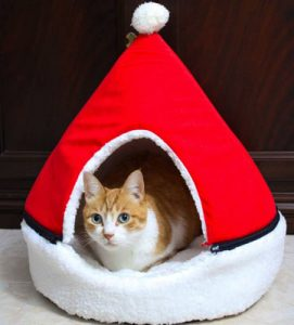 Igloo natalício Rudolph's Hat photo review